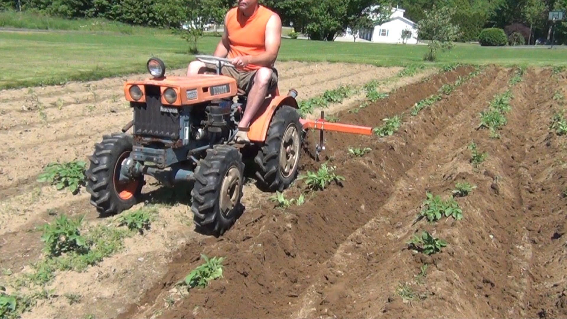kubota b6000 hilling potatoes Small, but strong, suitable for family work.