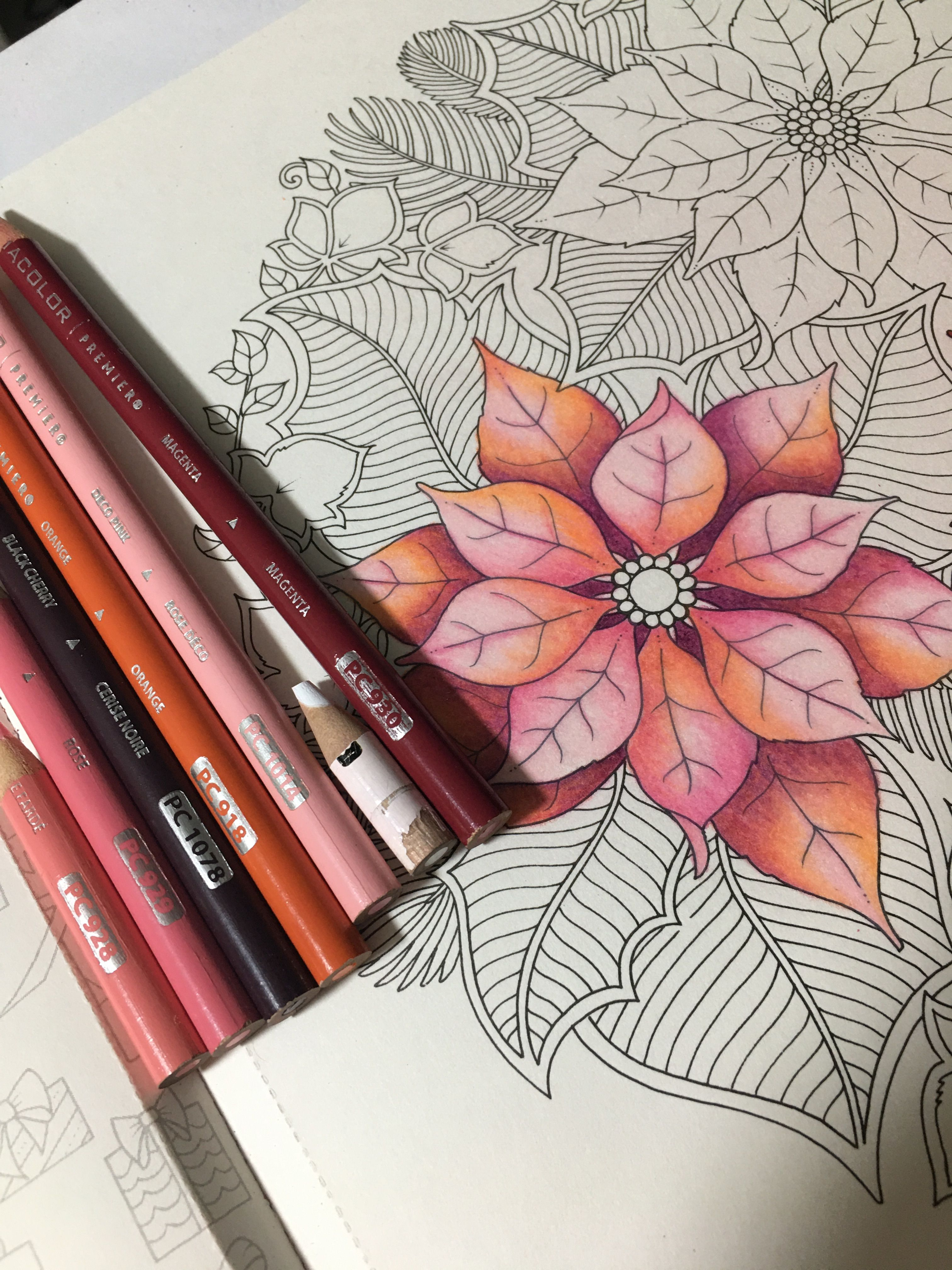 Pin By Beyzanur On Prismacolor Combos By Leslie Francisco Color Drawing Art Color Pencil Art Coloring Book Art