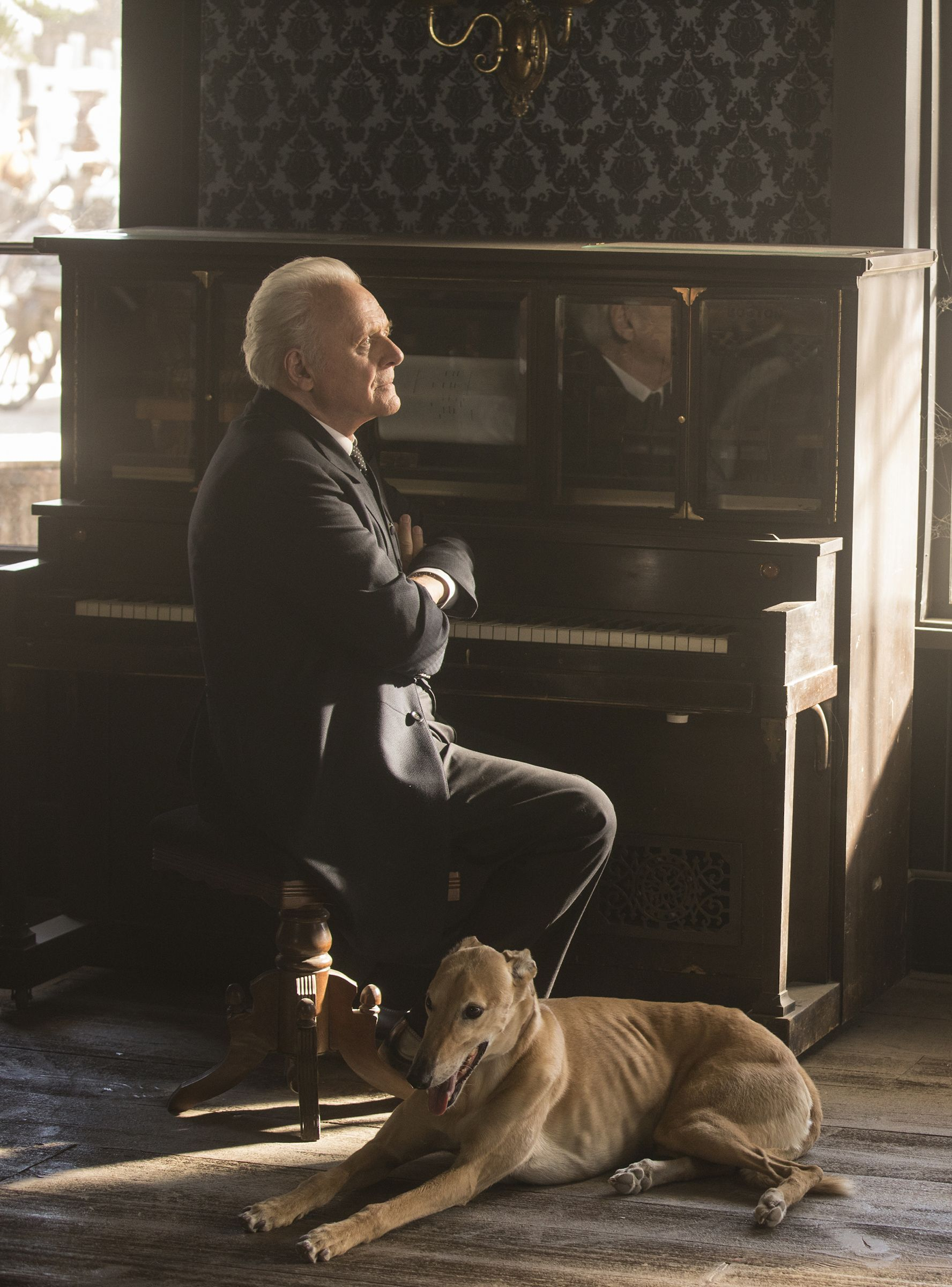 I Have A New Favorite Westworld Character It S Ford S Very Good Boy