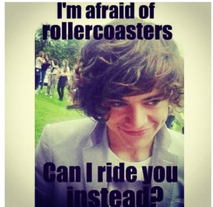 Im afraid of rollercoasters, can I ride you instead