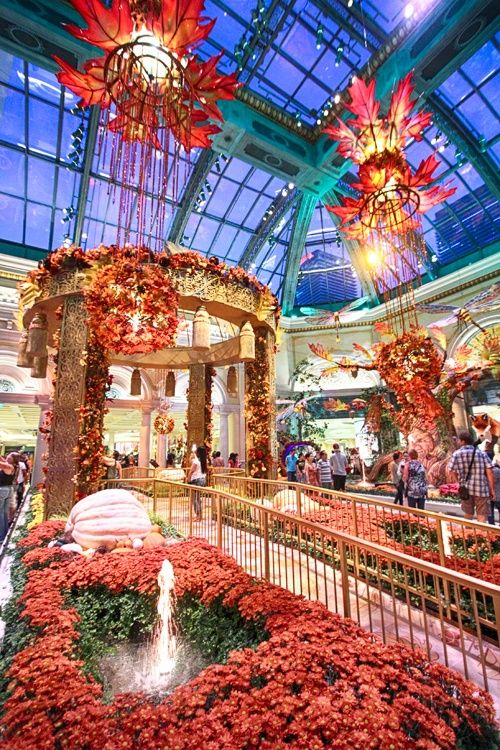 12 Things You Absolutely Must Do In Las Vegas