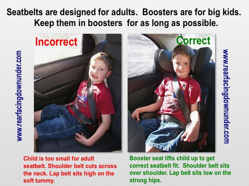 Swell The Importance Of Booster Seats Injury Prevention Dailytribune Chair Design For Home Dailytribuneorg