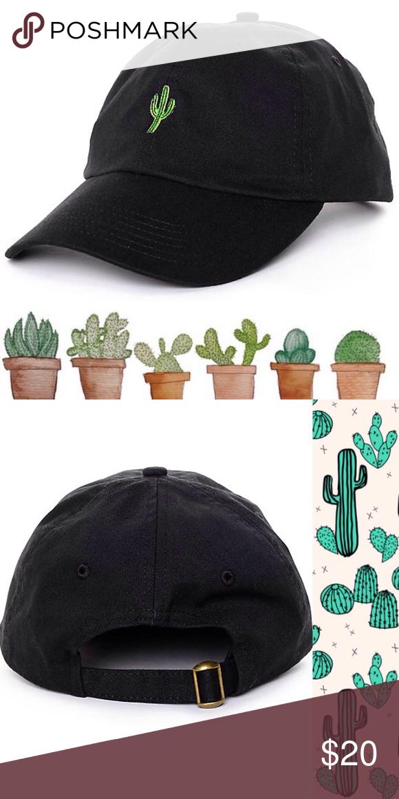 fcdc0f08cb5 Black Cactus Empyre Baseball Hat Perfect