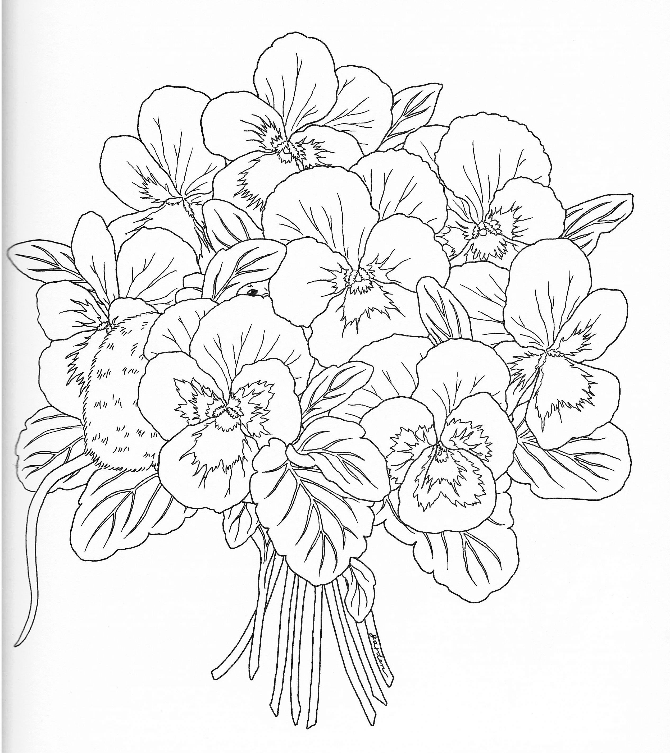 Harmony Nature Adult Coloring book Pg