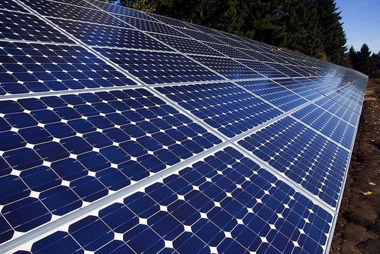 New Bio Solar Panels Are Made From Cotton And Castor Beans Solar Panels Solar Solar Energy