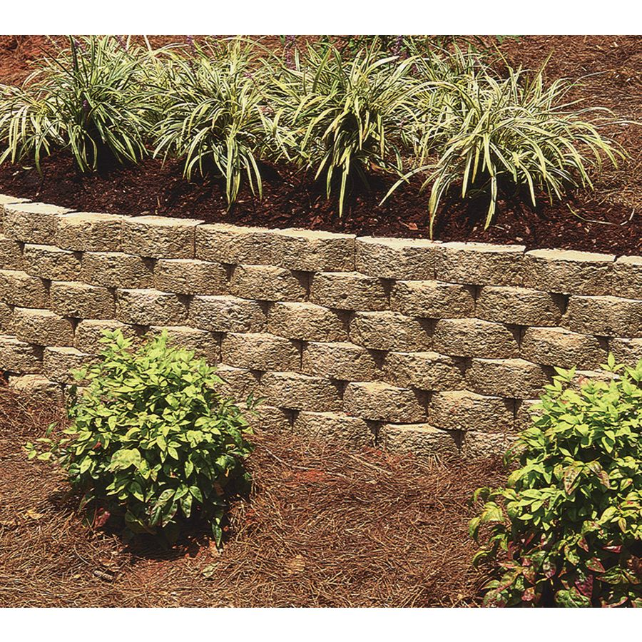 Oldcastle Lodgestone Tan Retaining Wall Block Common 3 In X 8 In
