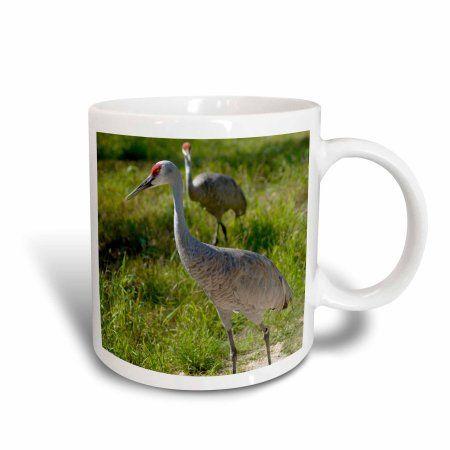 3dRose Sandhill Crane birds Nebraska - US26 GHA0062 - Gayle Harper, Ceramic Mug, 15-ounce