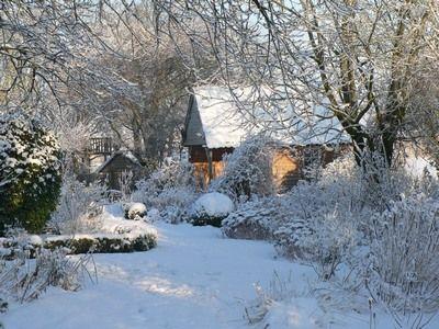 souvenir de neige des oiseaux en hiver et un chien le blog du jardin des f es. Black Bedroom Furniture Sets. Home Design Ideas