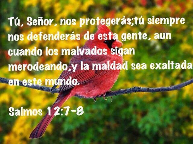 Salmos 12:7-8 #shareurpixs