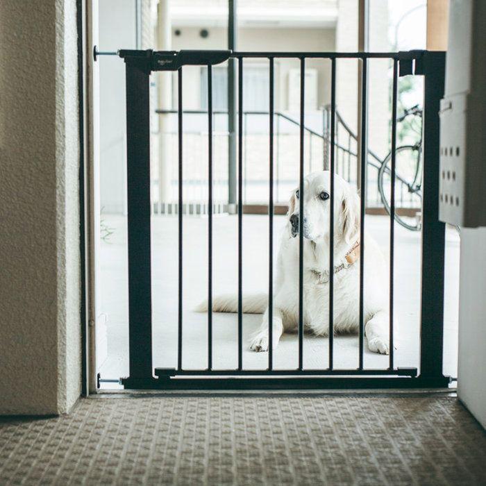 北欧デザインドッグゲート [Scandinavian Dog Gate]