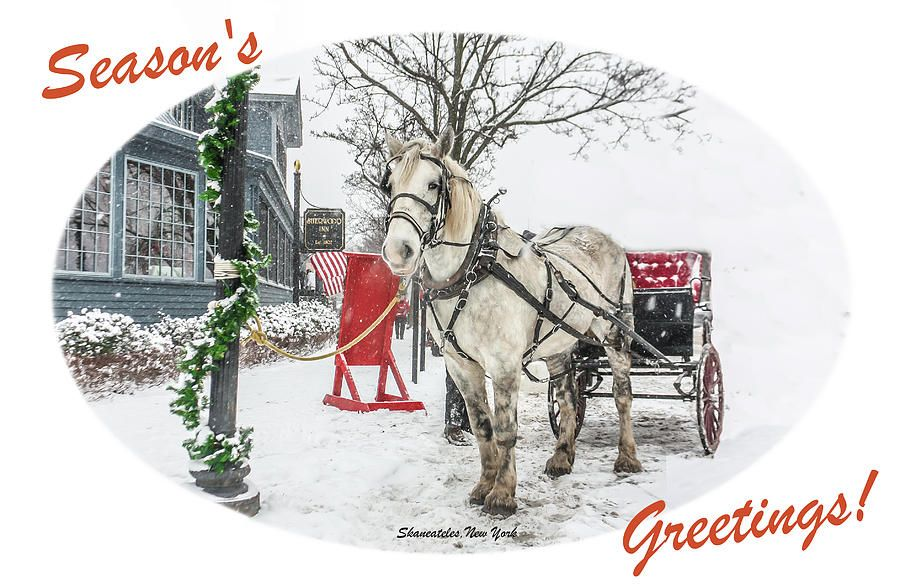 Skaneateles Dickens Christmas 2020 Dickens Christmas Card in 2020 | Horse and buggy, Christmas cards
