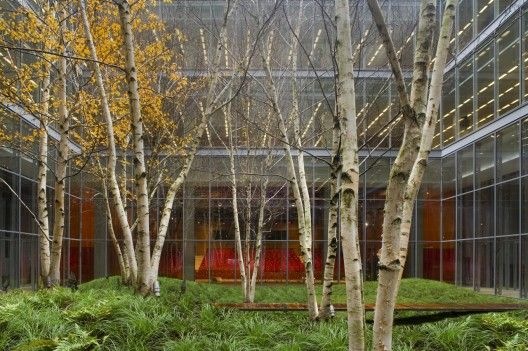 Perfect The New York Times Building Lobby Garden / HM White Site Architects And  Cornelia Oberlander Architects