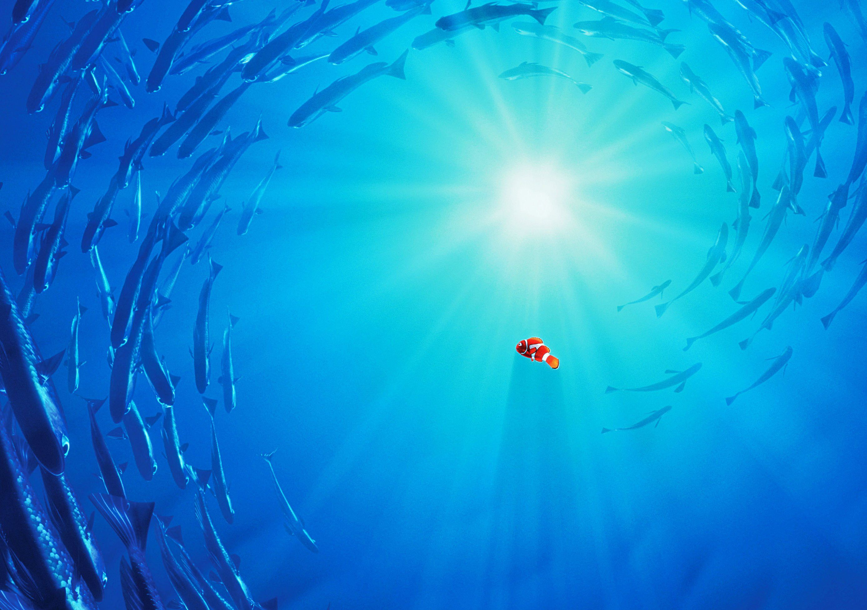 pinАлександр Третьяков on finding dory nemo | pinterest | wallpaper