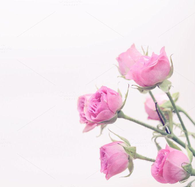Rose bouquet by Liliia Rudchenko on @creativemarket website - website storyboard