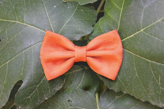 Photo of Gold and cream velvet bow tie, elegant bow tie for parties, …