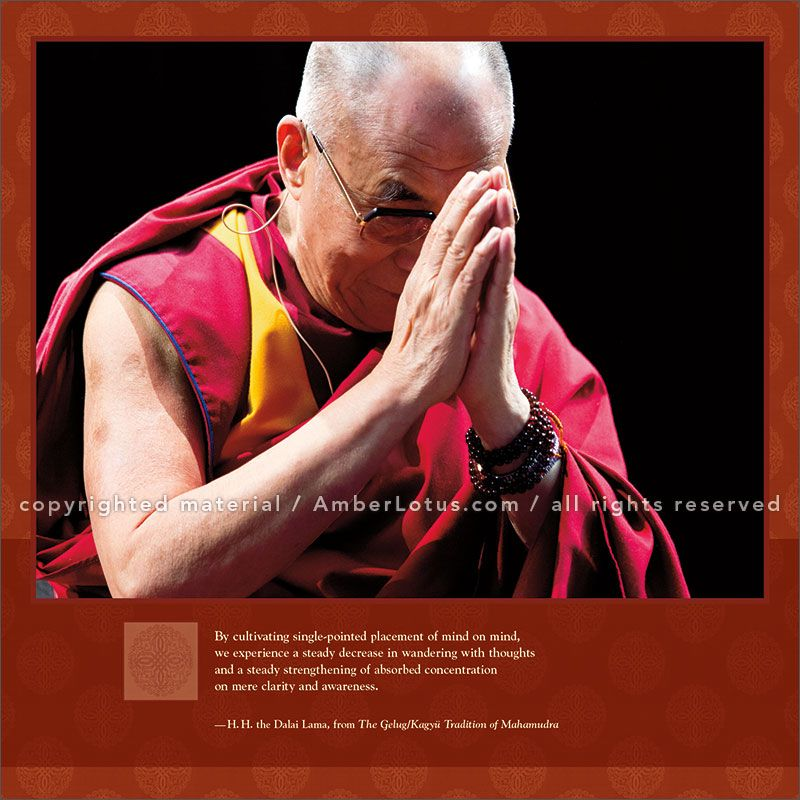 Dalai Lama 2017 Wall Calendar: Heart of Wisdom. Click through to see the most recent edition!
