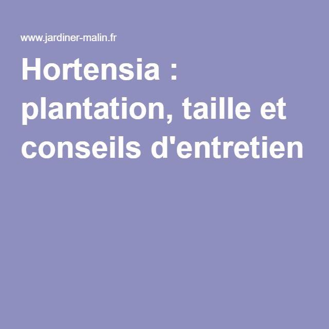 Les 25 meilleures id es de la cat gorie entretien hortensia sur pinterest entretien des - Entretien et coupe des hortensias ...
