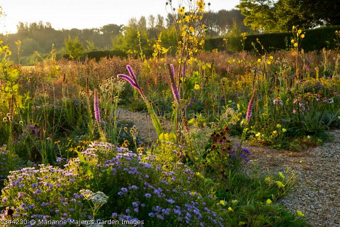 Marianne Majerus Garden Images In 2020 Garden Images Garden Design Liatris