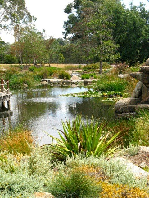 Wonga Park Vic Three Years On Gardens Australia Green