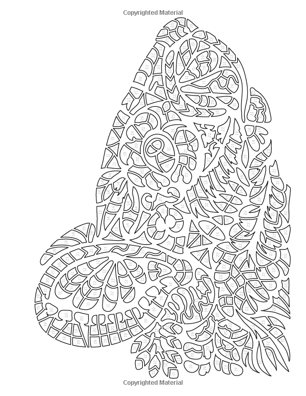 Amazon Com Animal Stencils Color By Number Activity Coloring Book For Adults Relaxation And Stress Relief Mosaic Colo Animal Stencil Coloring Books Stencils
