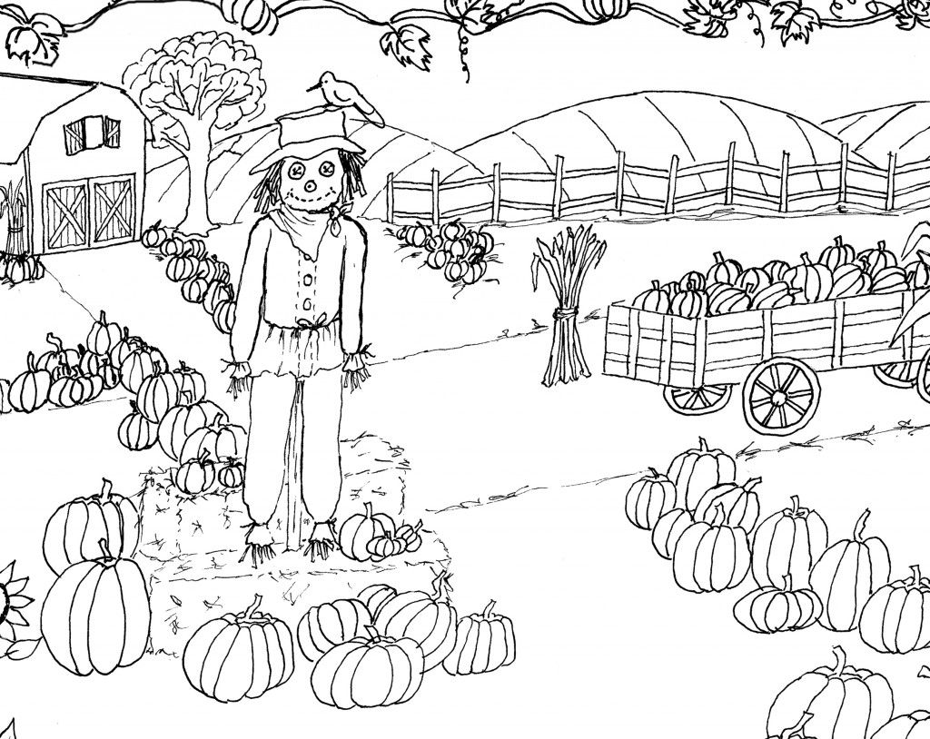 Pumpkin patch coloring page printable pinterest patches and