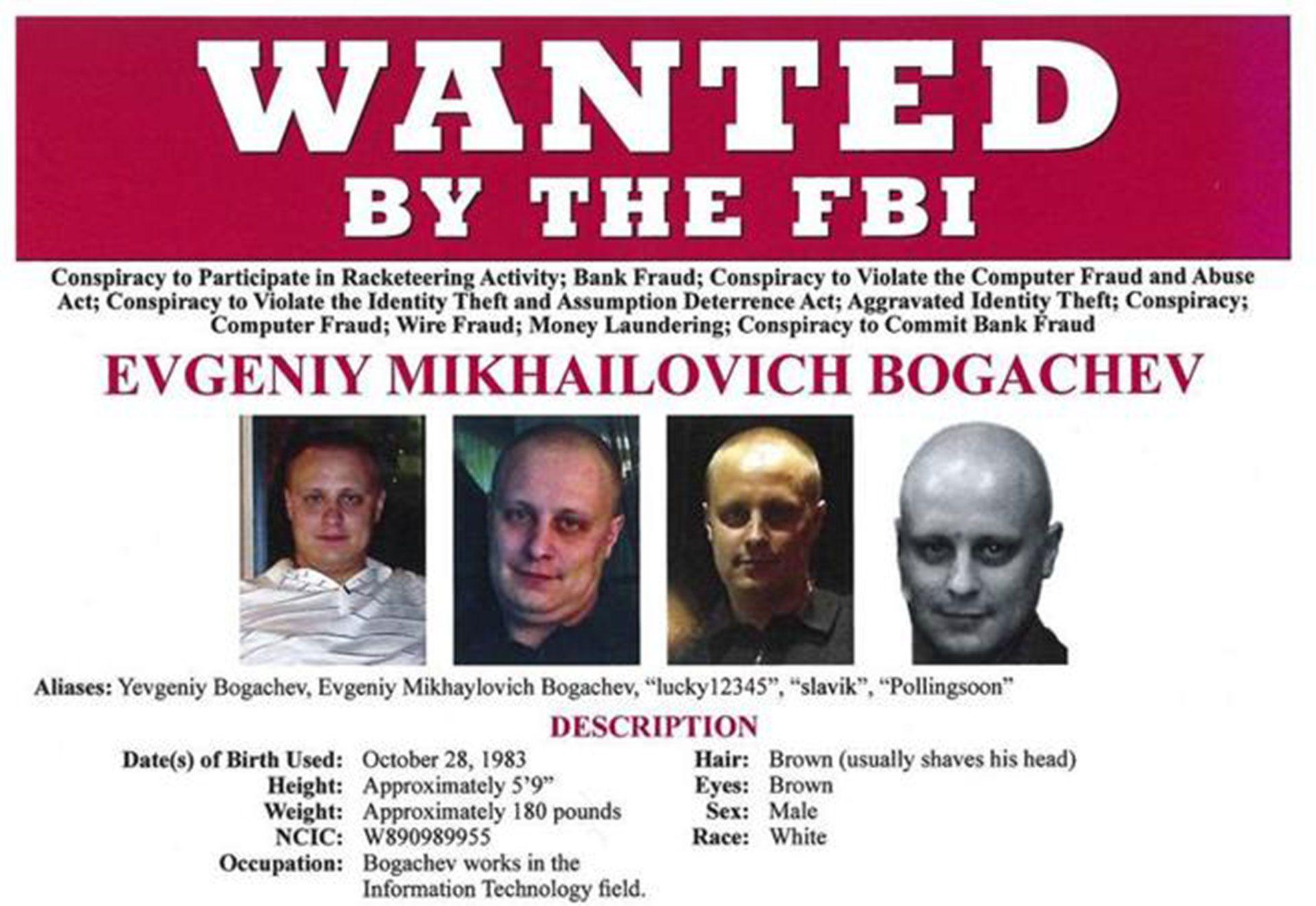 Gatos, autos caros, atuendos excéntricos y mucho lujo: el hacker más buscado del mundo se esconde en Rusia
