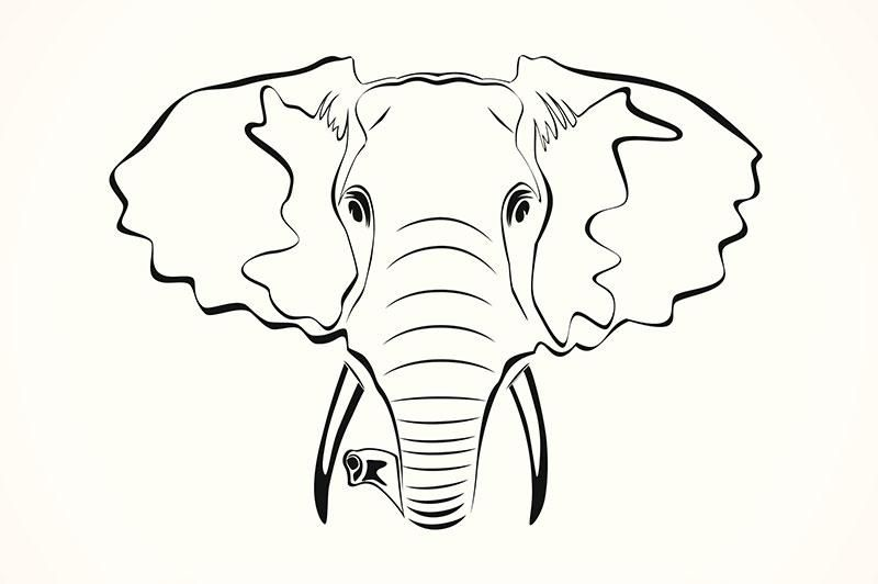Mystical Elephant Coloring Page Elephant Coloring Page Elephant