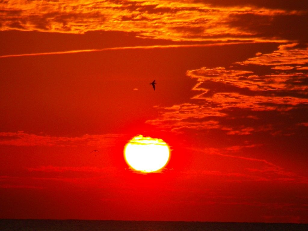 Sunset | Red | Pinterest | Urdu poetry, Color red and Aquariums