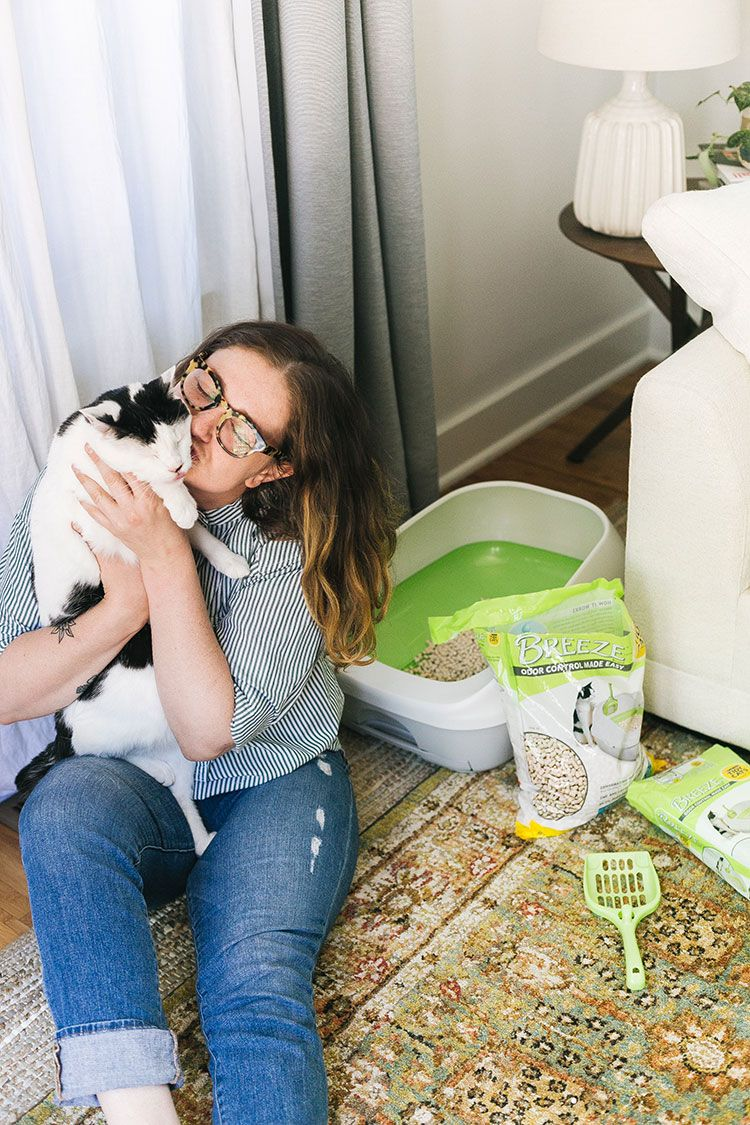 Tidy Cats BREEZE Litter System Review   Tips for Living With a Cat in a Small Space! #AD Find out why I love the ammonia odor absorbing pads and anti-tracking pellets from #TidyCats and how I transitioned my cat to a new litter box on jojotastic.com #EaseofBREEZE