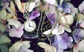 Mi tiempo entre flores