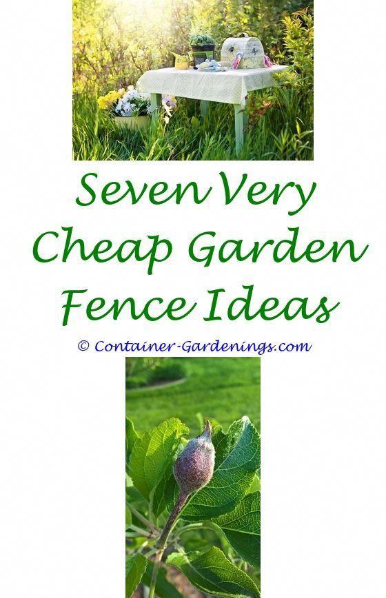101 Container Gardening Ideas Apartment Balcony Garden Ideas