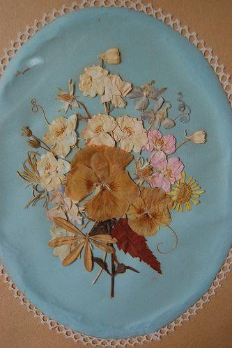 Vintage dried pressed flowers
