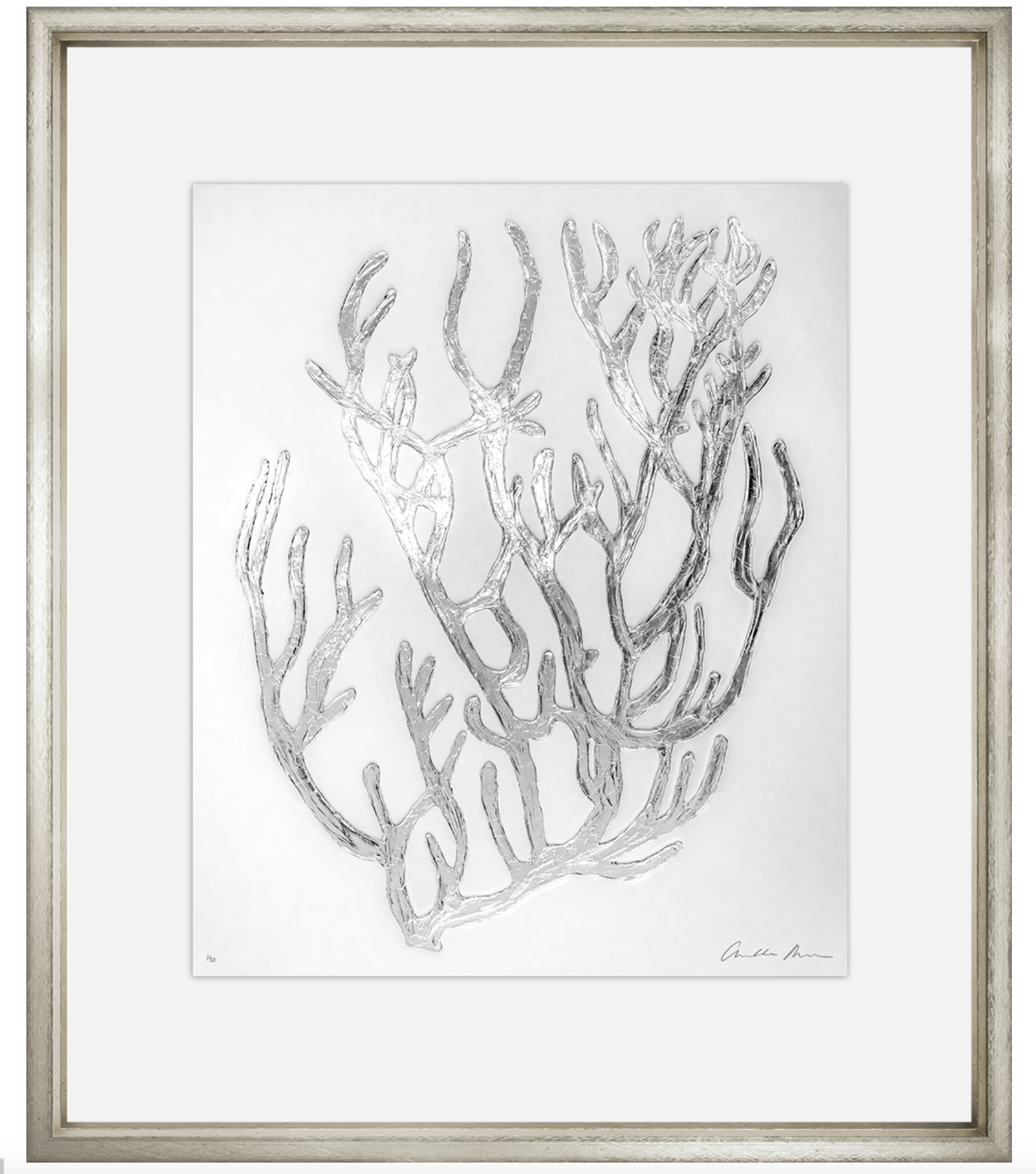 Charlotte morgan silver coral framed wall art iv wall art the