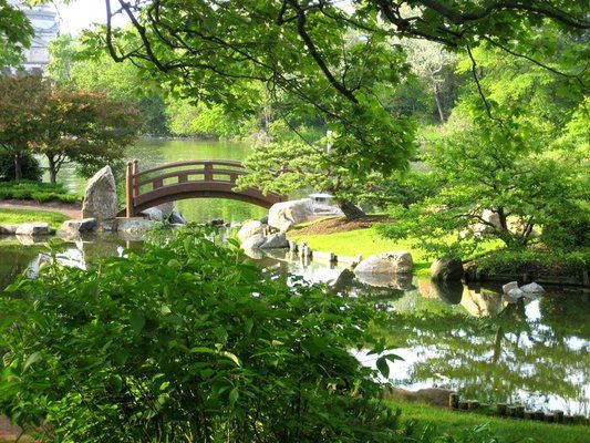 Osaka Garden, Hyde Park, Chicago. Gorgeous! A great place to go with ...