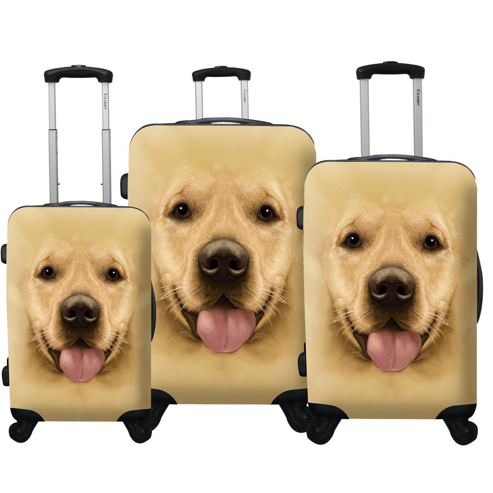 35f134119145 Chariot Labrador 3-Piece Hardside Lightweight Upright Spinner ...