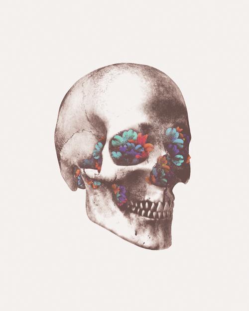 Pin By Claire Mcdonald On Prints Art Skull Art Skull