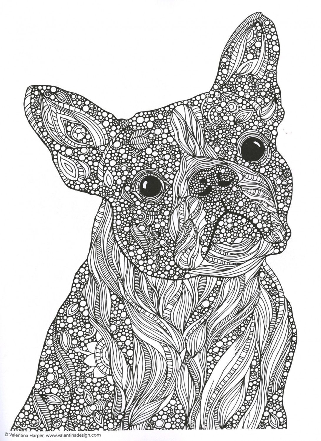Creative Coloring Animals Adult Coloring and Activity Book ... | coloring books for adults animals