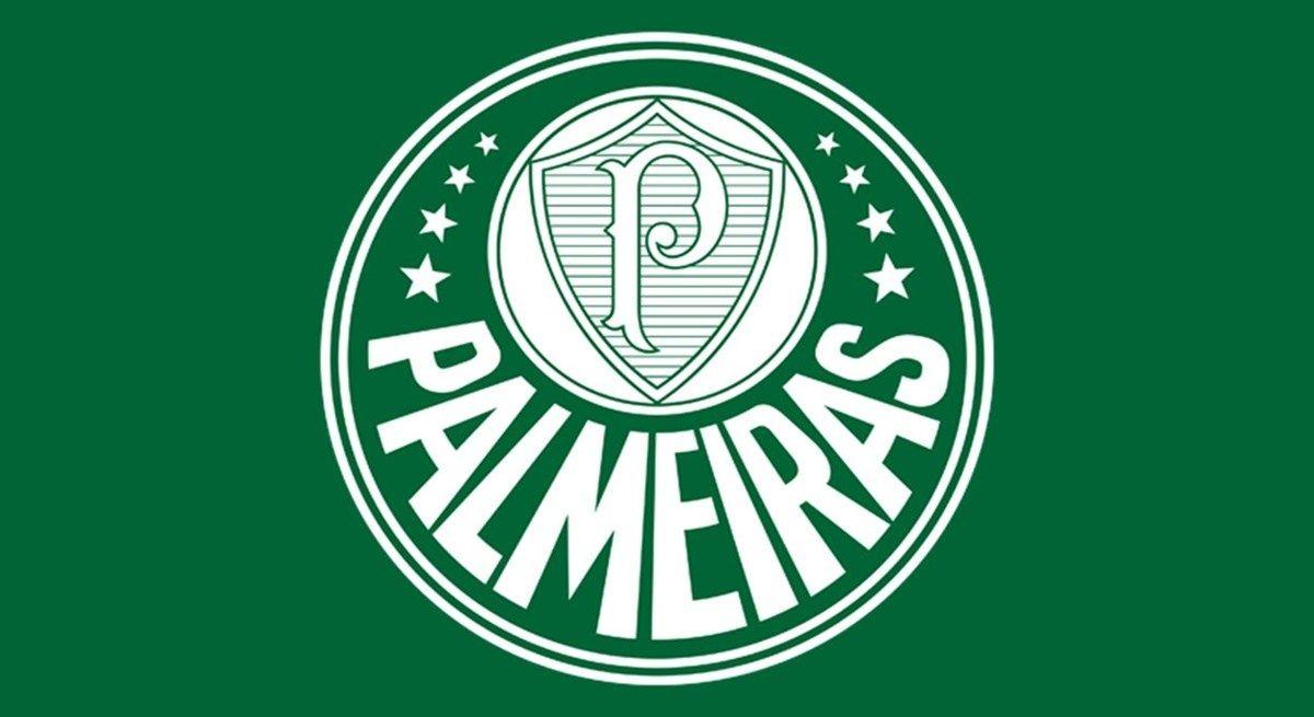 Palmeiras Vai Enfrentar O Ponte Preta Pelo Campeonato Paulista