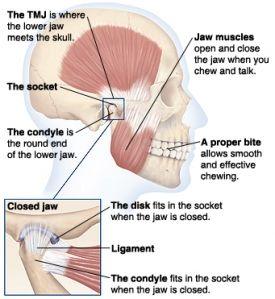Pin On Info Regarding Tmj