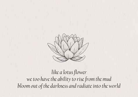 Like a lotus flower, we too have the ability to rise from the mud bloom out of the darkness and radiate into the world.