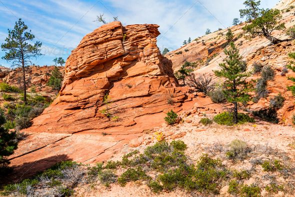 Realistic Graphic DOWNLOAD (.ai, .psd) :: http://jquery.re/pinterest-itmid-1006862741i.html ... Zion National Park, USA. ...  Utah, america, beauty, blue, canyon, cliff, color, journey, landscape, line, mountain, national, nature, nobody, outdoors, park, photography, place, red, rock, sandstone, sky, tourism, travel, tree, usa, zion  ... Realistic Photo Graphic Print Obejct Business Web Elements Illustration Design Templates ... DOWNLOAD :: http://jquery.re/pinterest-itmid-1006862741i.html