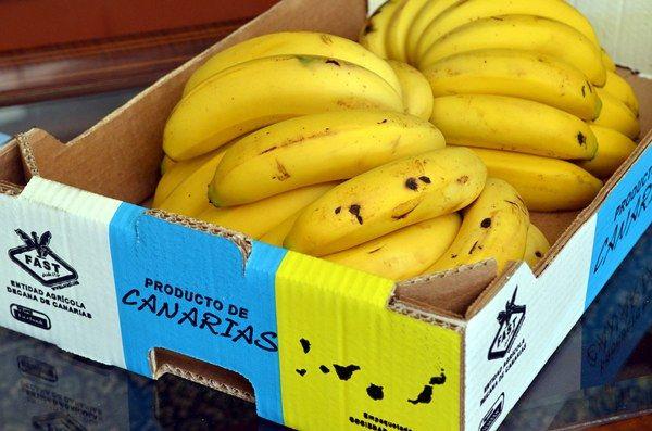 La Banana Canaria è la coltura più importante delle Isole Canarie  e, per decenni, la sua industria è stata coinvolta nella crescita ec...