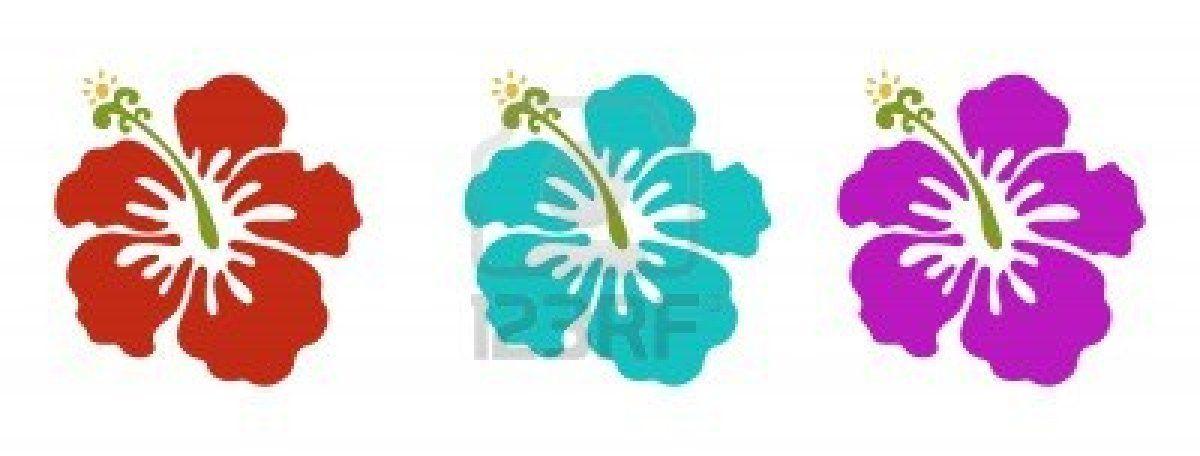 -flores-