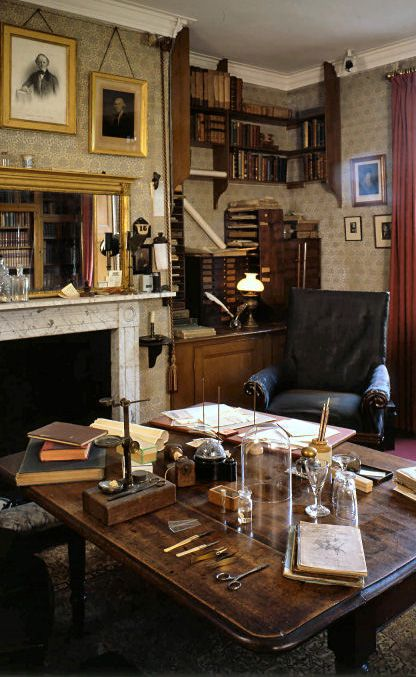 An old study, full of books and a comfy chair. I love it ...