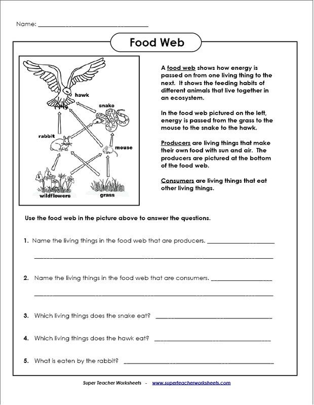 Pin by Pat Ireland on Homeschool Science | Food web ...