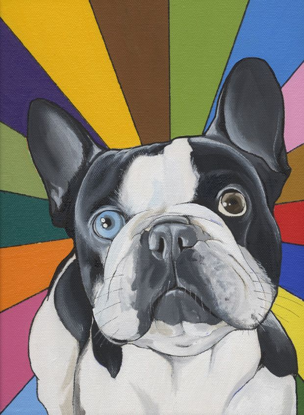 French Bulldog With A Rainbow By The Dog Painter Jeroen Teunen