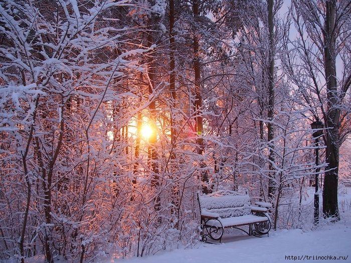 таблице тихо падает снег картинки ничего смотрю фотографии
