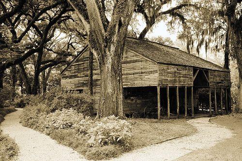Pin On Plantation Homes