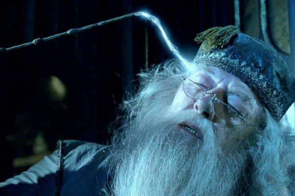 Entenda Melhor Harry Potter Harry Potter Filme E Animais