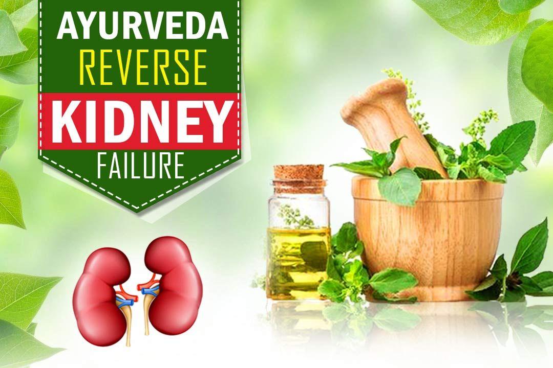 Can Ayurveda Reverse Kidney Failure Kidney Failure Kidney Failure Treatment Kidney Failure Symptoms